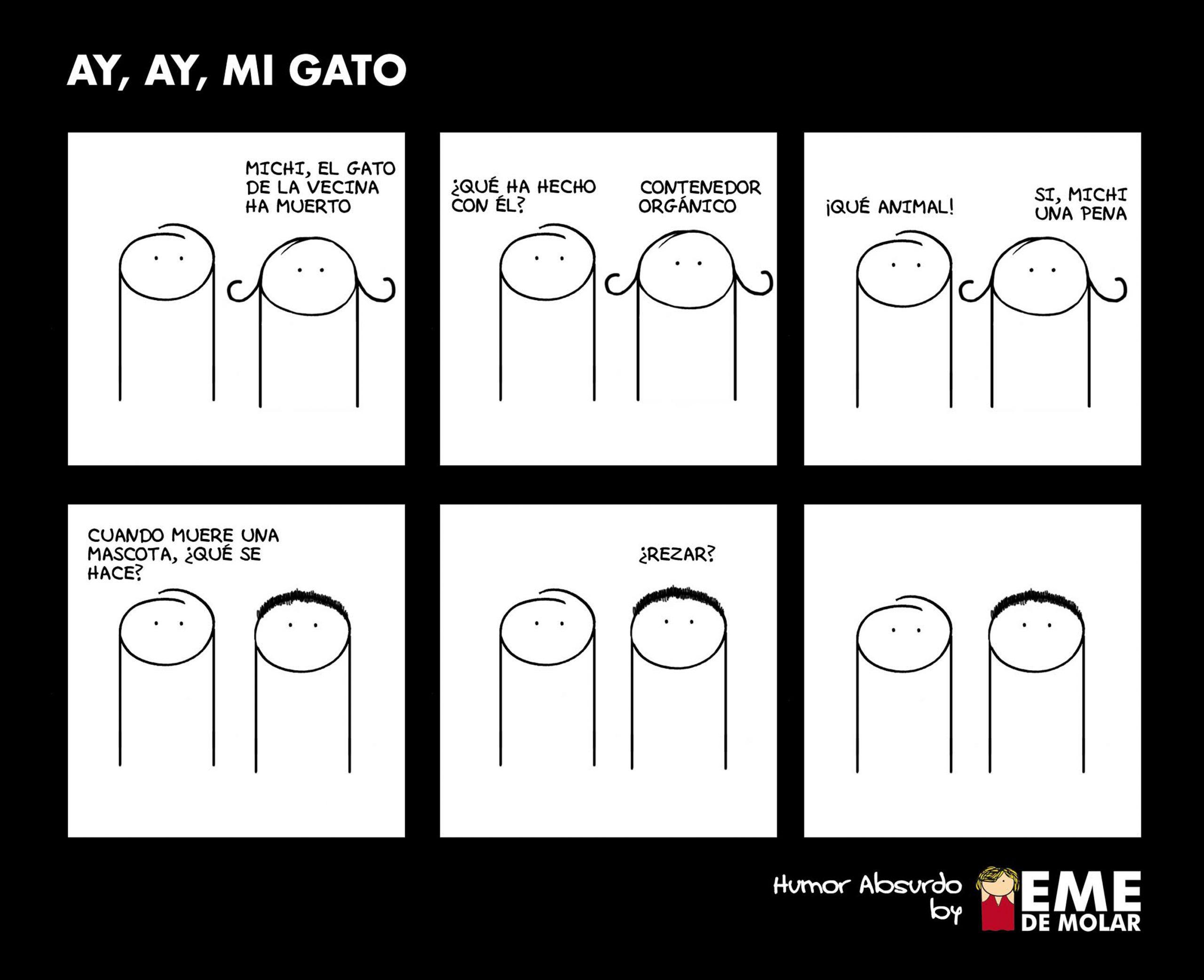 AY-AY-MI-GATO